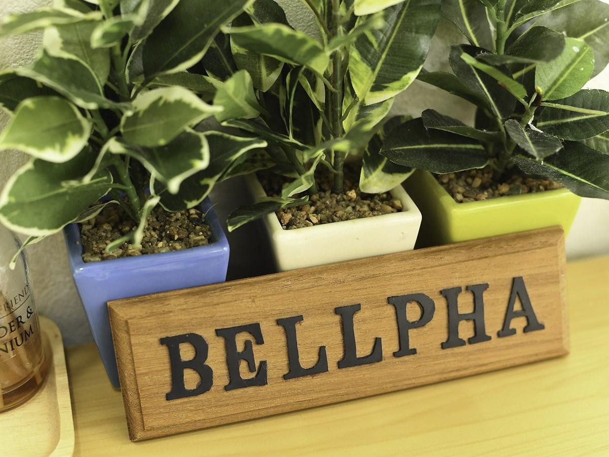 Bellpha(ベルファ)のジム画像2